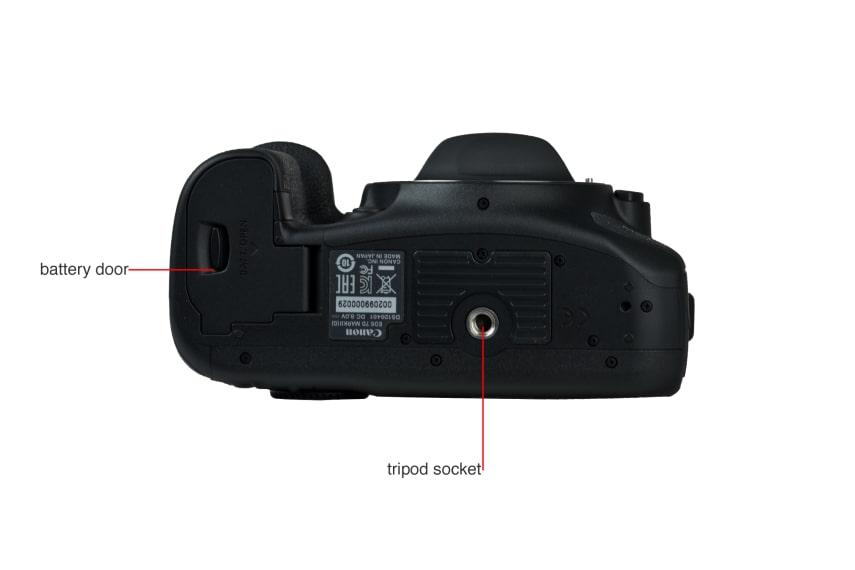 Canon 7D Mark II Digital Camera Review - Reviewed.com Cameras