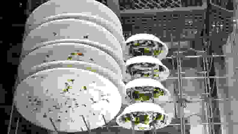 Dishwasher_testing