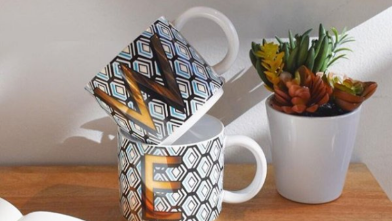Succulent next to mugs on table.
