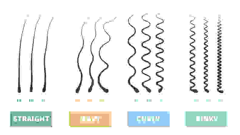 The four types of curly hair: straight, wavy, curly, and kinky.
