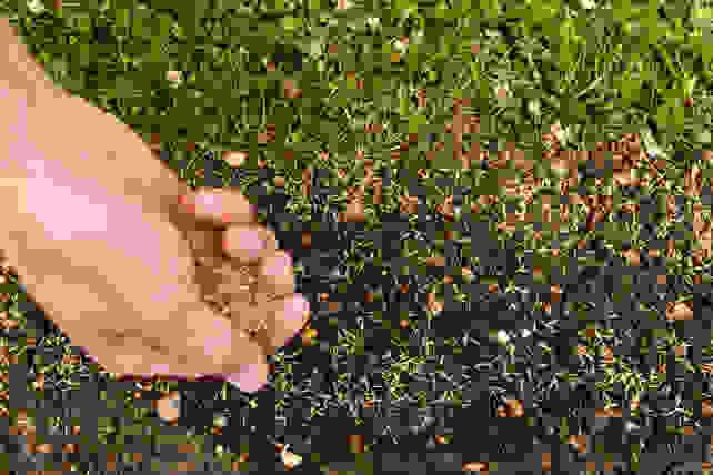Seeding a lawn by hand