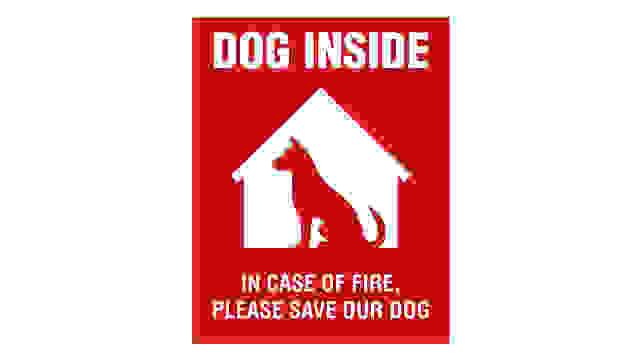 Emergency pet items