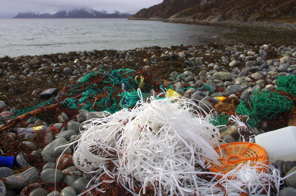 Trash on a rocky beach