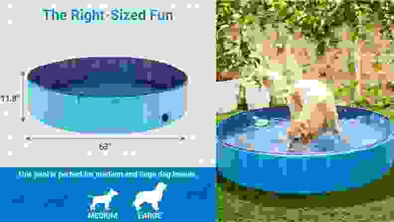 Left: An illustrated diagram indicates which size pool to order based on a dog's size; Left: A golden retriever plays in a filled swimming pool in a fenced backyard