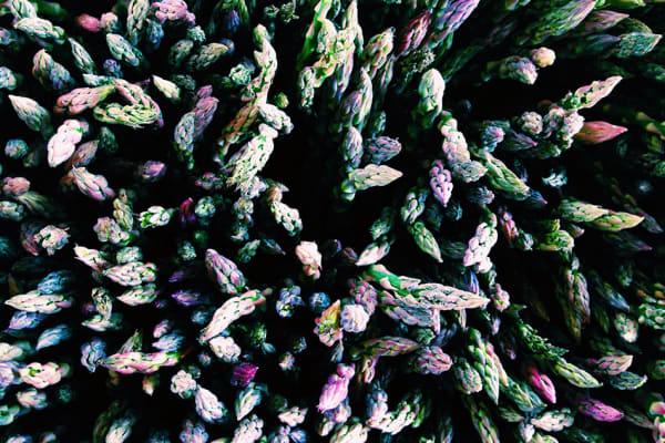 Alexa Seidl's photo of different colored asparagus took home a gold bar. [Credit: Alexa Seidl/IPPA]