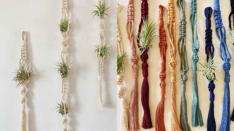 Plants hang on macrame on a white wall; a series of multicolored knotted yarns house plants.