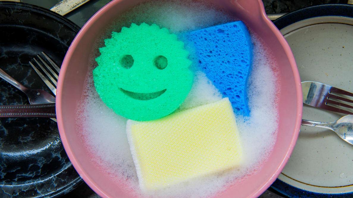 the best sponges
