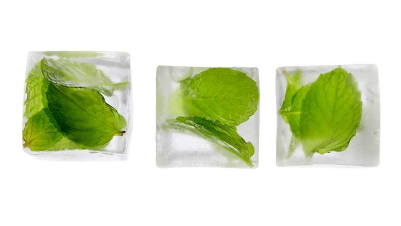 herbs in ice cubes