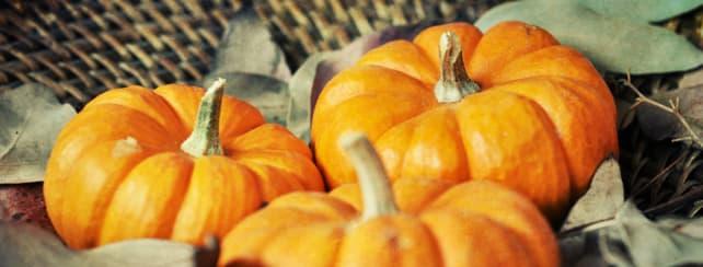 Mini Pumpkin Favors
