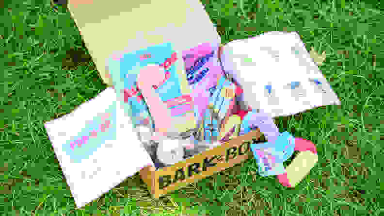 BarkBox