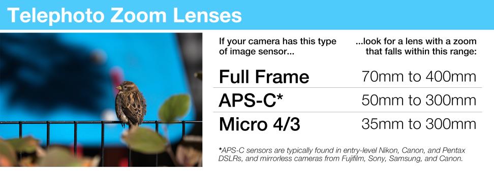 Telephoto Zoom Lenses
