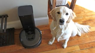 The iRobot Roomba i7+ is marketed toward pet owners, but I didn't understand just how much of a game-changer it would be.