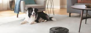 Robot vacuum lead