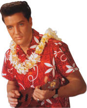 aloha-shirt-2.jpg