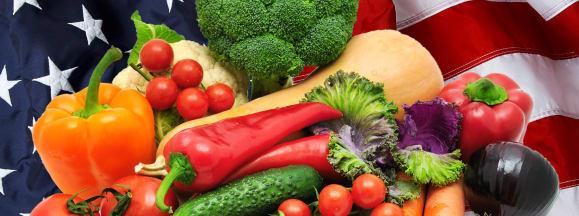 American vegetables hero