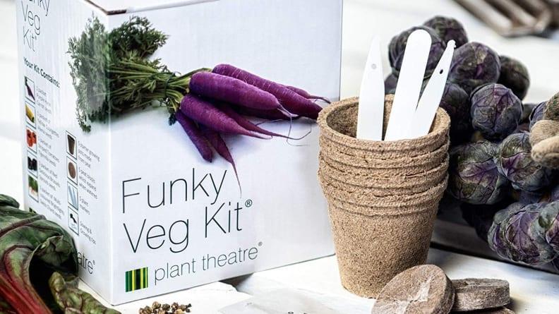 Funky Veggies Kit