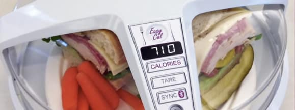 Ge calorie counter hero