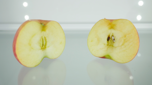 Fridge Fresh Apple Test
