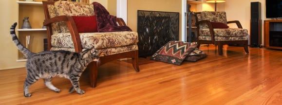 Hardwood floors hero 2