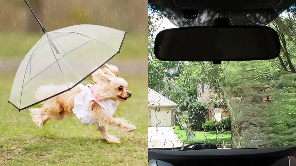 10 reasons to look forward to the rainy days of spring