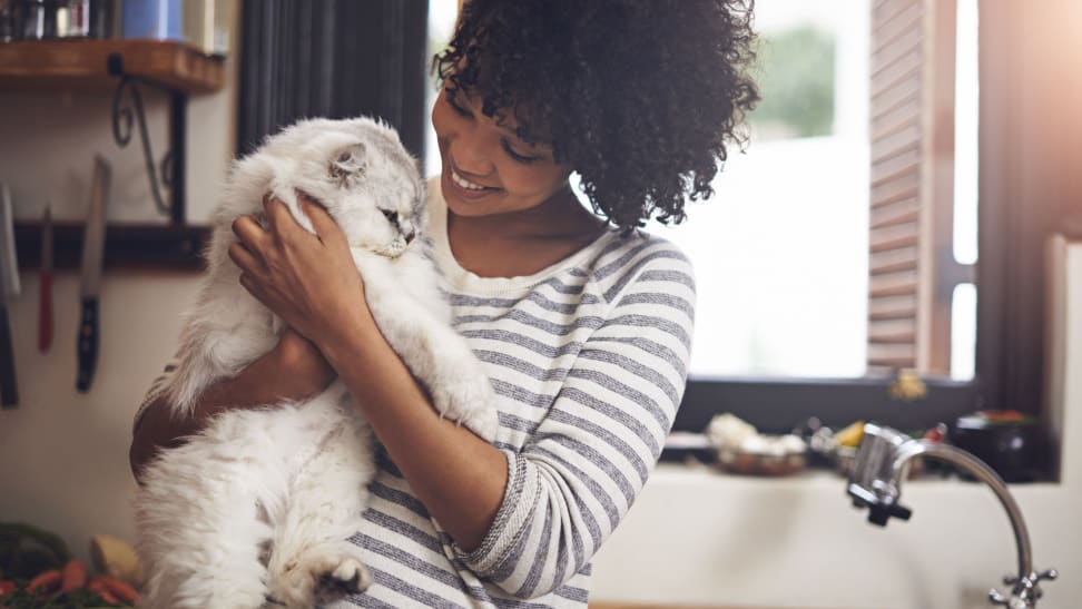 A young woman holds a fluffy white cat close for a cuddle