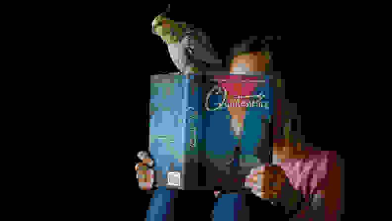 Owl Crate Jr.