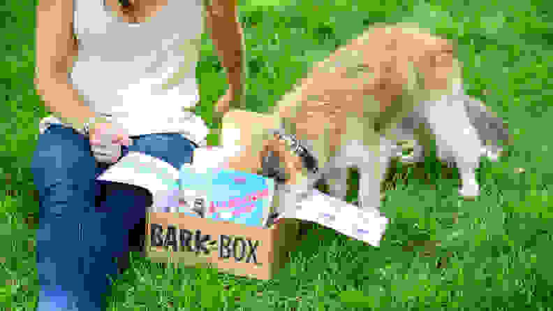 An image of a woman and a small dog opening a Bark Box together.