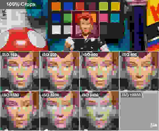 RosieCrops.jpg
