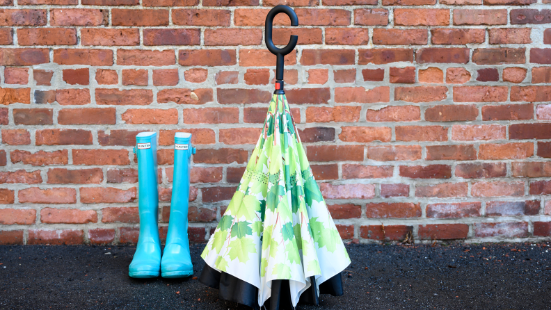 Standing Umbrella