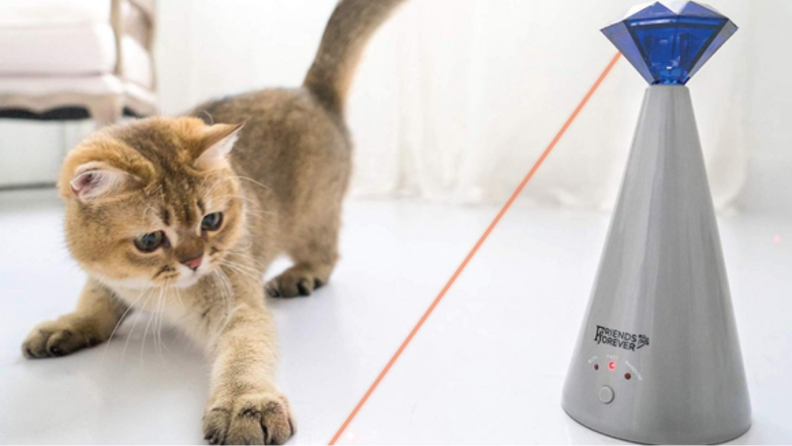An image of a cat pawing at a laser from a cat toy.
