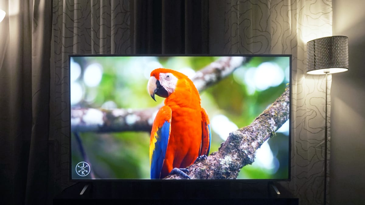 Vizio P Series Review - Reviewed Televisions
