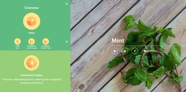 Sage (Mint)