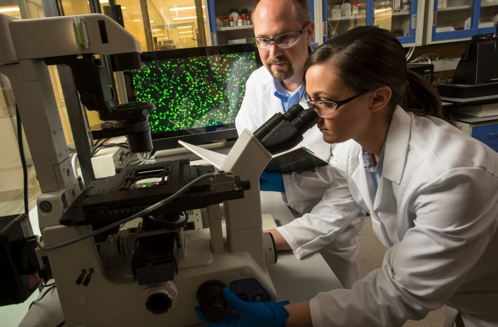 Researchers developing Corning Gorilla Glass