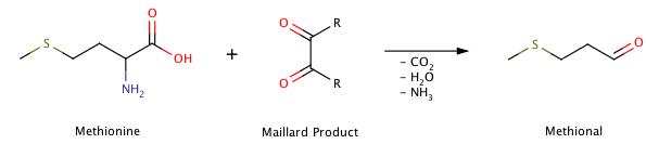 strecker reaction.png