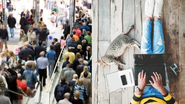 In-store vs. online shopping