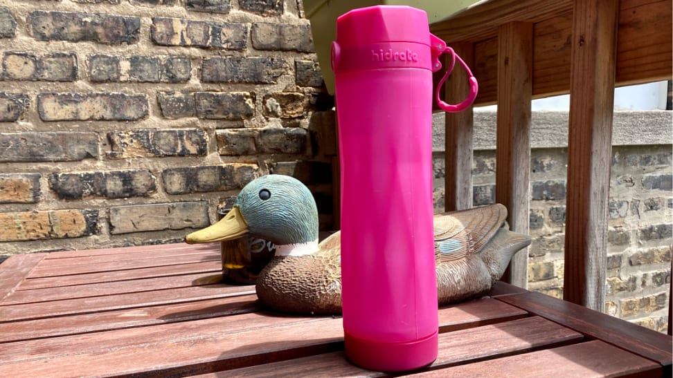 Hot pink water bottle sitting in the sun next to a duck figurine.