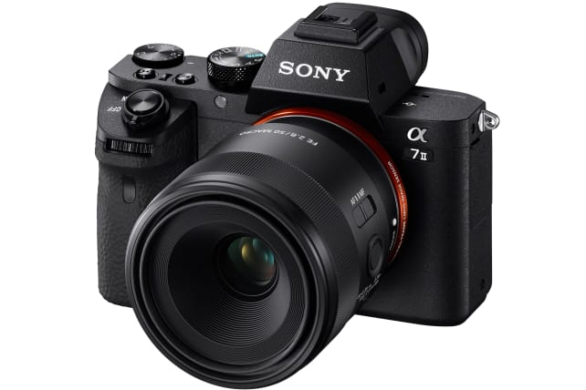 Sony 50mm f/2.8 Macro on A7II
