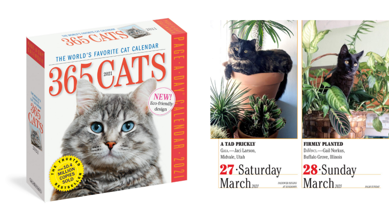 An image of a cat-of-the-day calendar box alongside a printout of a day from the calendar.