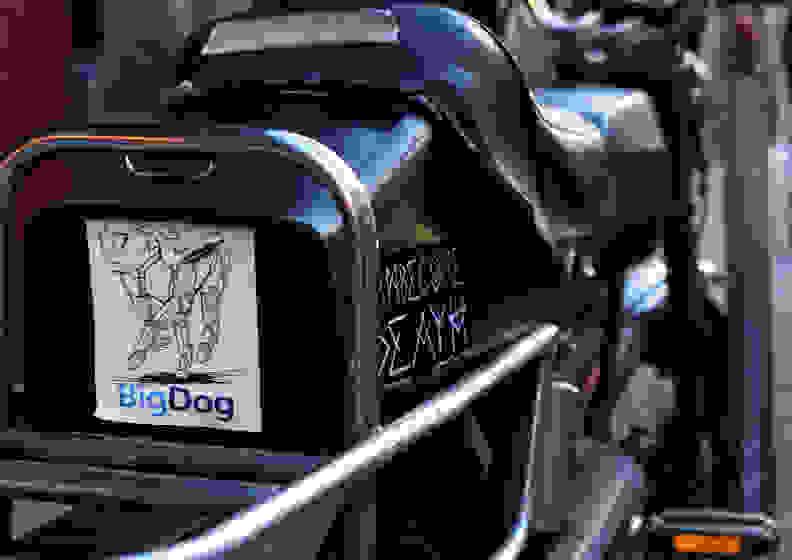 NIKON-D810-SAMPLES-FULL-12-UPLOAD.jpg