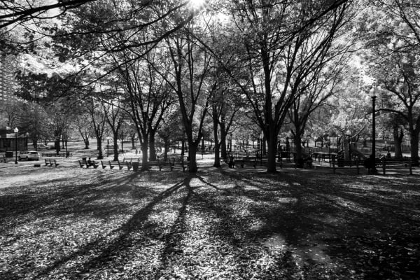 EXIF: 8.8mm, 125 ISO, 1/160, f/7.1