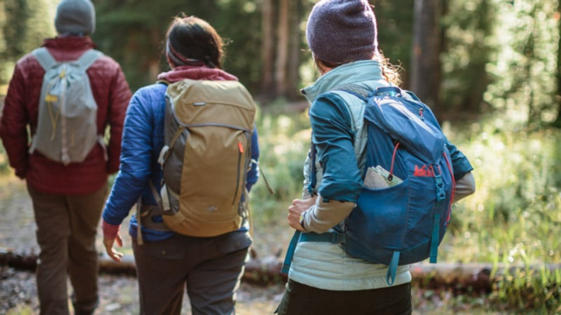 Three people carrying REI daypacks hike in the wilderness.