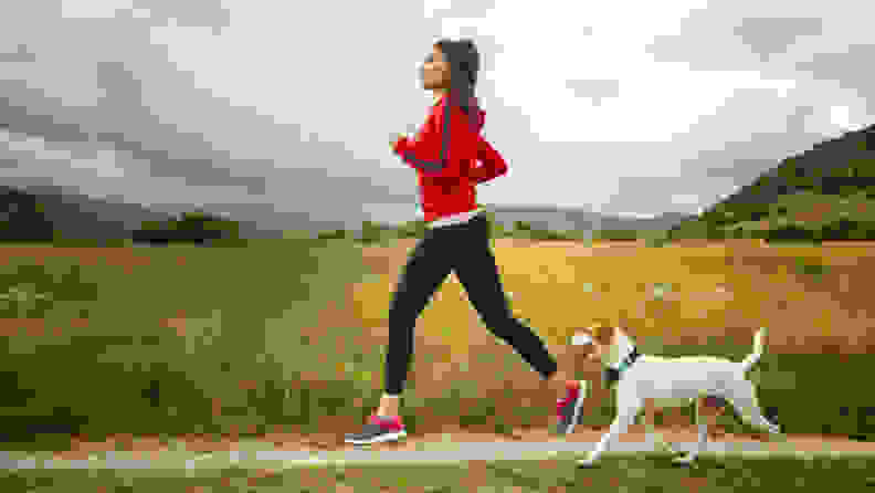 A jogger takes their dog along for a run; the dog is wearing a Wagz Freedom Smart Dog Collar.