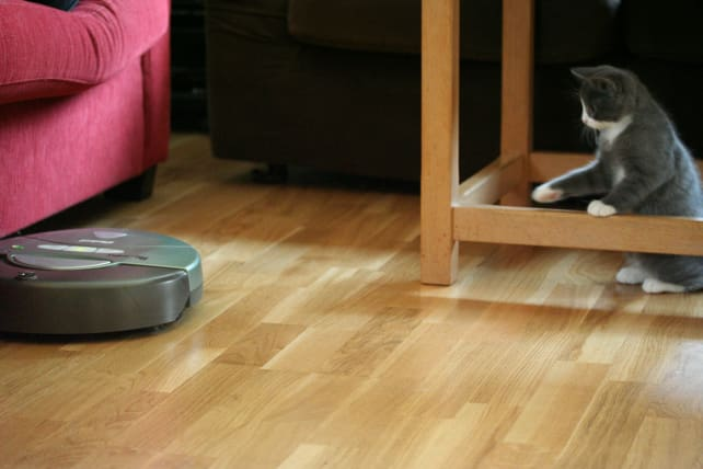 Roomba On Long Cat Hair