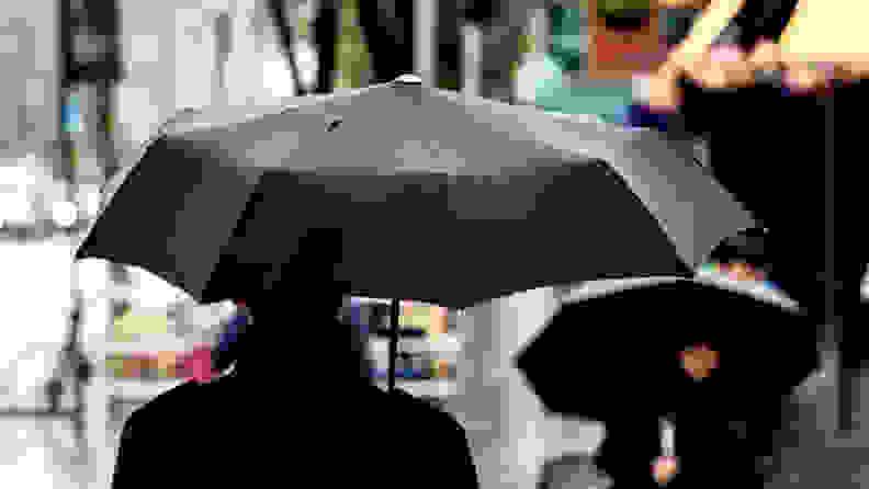 The best gifts for men: Davek Umbrella
