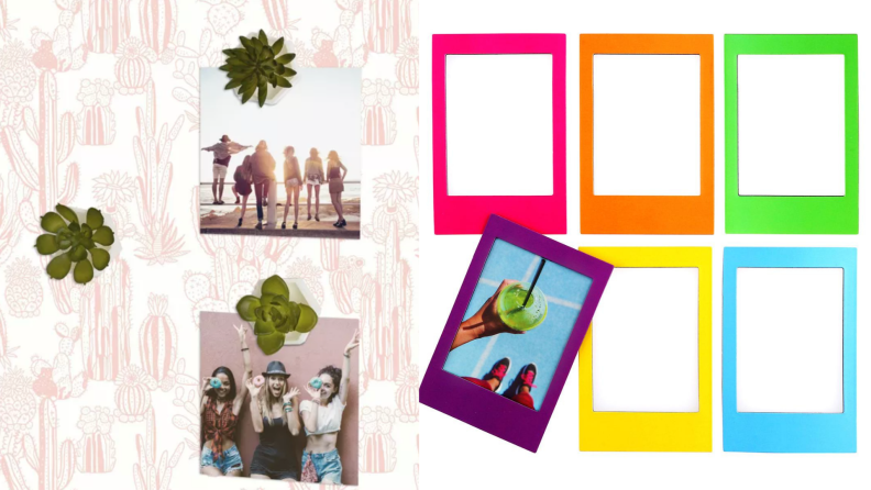 On left, three mini succulent plants holding photos of a smiling group of friends in front of pink and white background. On right, six Instax magnetic rainbow frames.