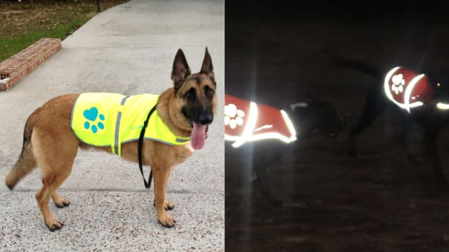 Safety Pup XD Reflective Jacket
