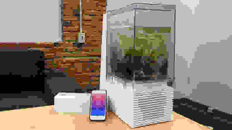 Mellow sous vide machine and app