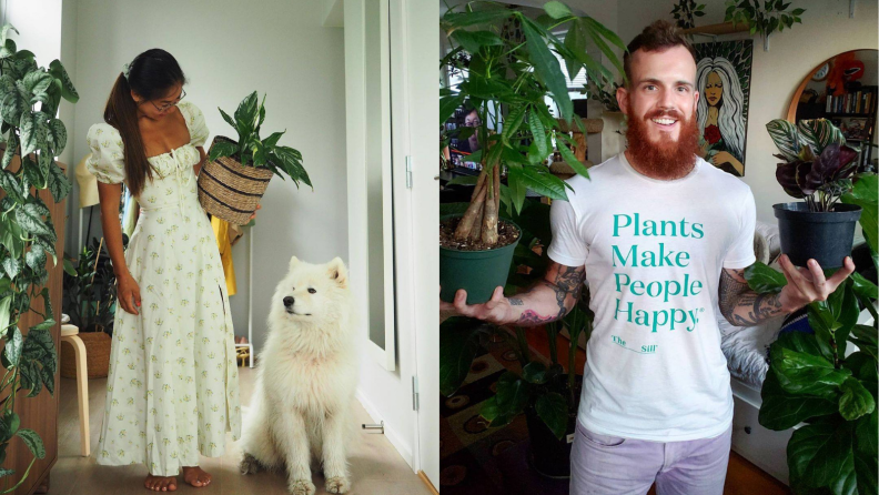 Left: A white dog looks up at a person holding a plant; Right: a person with a beard holds one plant in each hand.