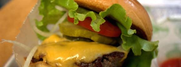 Cheeseburger love beautiful burg hero