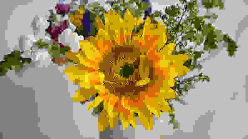 Baking_soda_flowers_preserved
